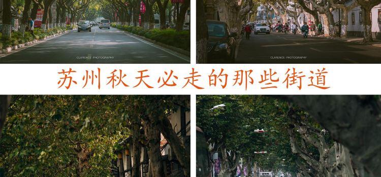 Suzhou Park (West Gate)2