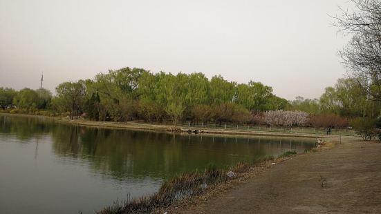 Shuizhui Lake