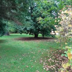 Orto Botanico User Photo