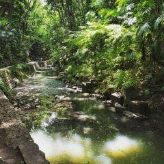 토도로키 계곡 여행 사진