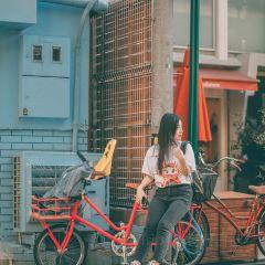타치바나 도오리 여행 사진