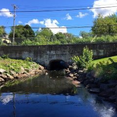 Wentworth Park User Photo