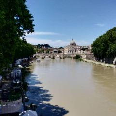 Ponte Umberto I User Photo