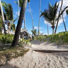 Bavaro Beach User Photo