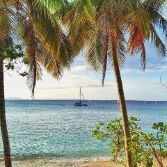 蘇莎亞海灘用戶圖片