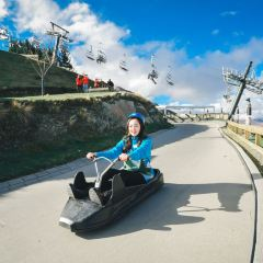 Luge User Photo
