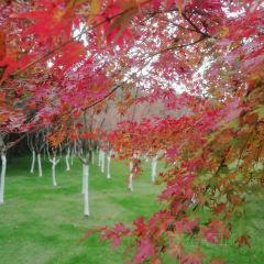 稠州公園用戶圖片