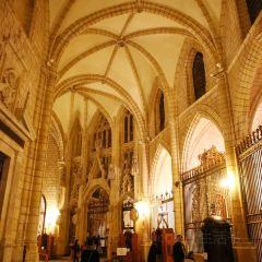 Cathedral de Santa Maria User Photo