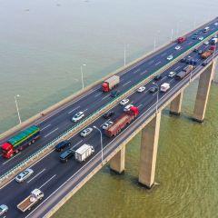 蘇通大橋用戶圖片