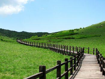 紫柏山景區