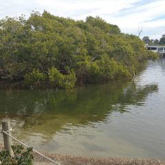 Hastings River User Photo