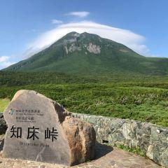 shirenkoto toge User Photo
