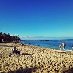 Queen's Beach用戶圖片