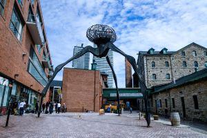 Toronto,instagramworthydestinations