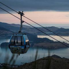 Christchurch Gondola User Photo