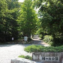 Midorigaoka Park User Photo