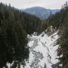 Ziptrek Ecotours User Photo