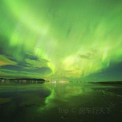 極地博物館用戶圖片