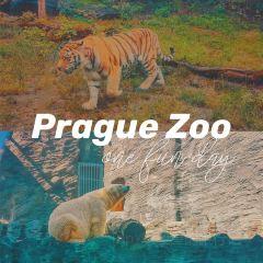 Prague Zoo User Photo