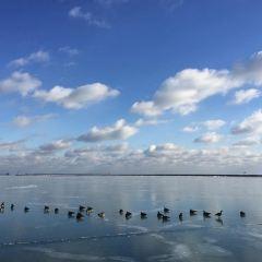 Northerly Island User Photo