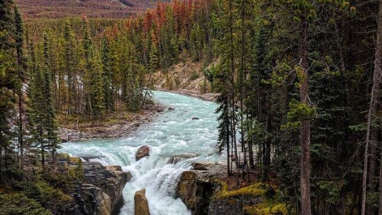 Sunwapta Falls and Canyon