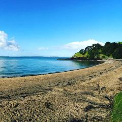Cheltenham Beach User Photo