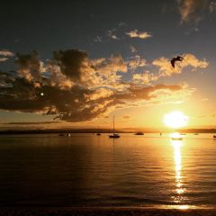 Pilot Bay Beach用戶圖片