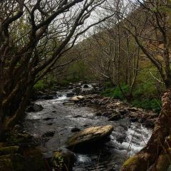Heddon Valley User Photo