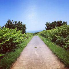 Teuri Island User Photo
