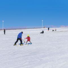 也迷裡滑雪場用戶圖片