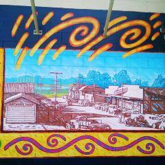 Katikati Murals用戶圖片