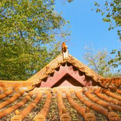 동백산 화이위안 관광단지 여행 사진