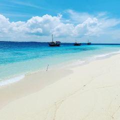 Tortuga Island User Photo