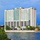 坦帕灣威斯汀酒店(Westin Tampa Bay)