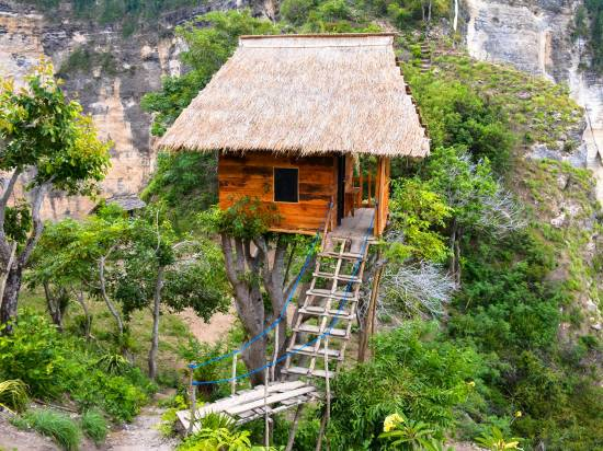 Rumah Pohon Tree House Reviews For 3 Star Hotels In Bali Trip Com