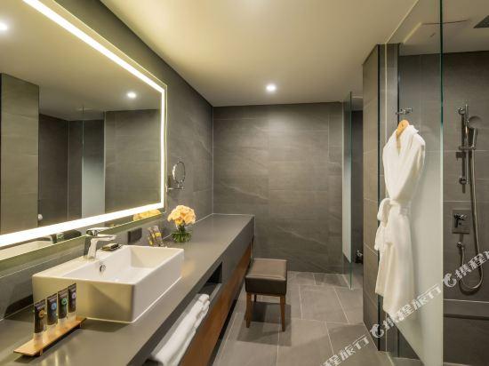 首爾東大門諾富特大使酒店(Novotel Ambassador Seoul Dongdaemun Hotels & Residences)豪華一室公寓