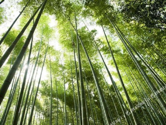 京都嵐山Ranzan酒店(Kyoto Arashiyama Ranzan Hotel)周邊圖片