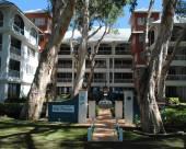棕櫚灣天堂別墅海灘美景公寓酒店