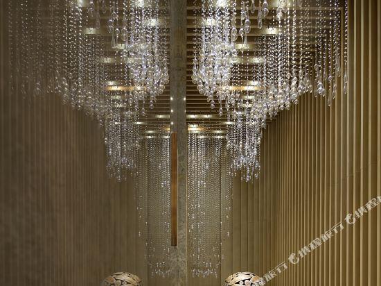 東方銀座國際酒店(東莞松山湖店)(Oriental Ginza International Hotel (Dongguan Songshan Lake))公共區域