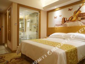 益陽維也納國際酒店高新區店