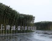 都江堰青城豪生薈度假酒店