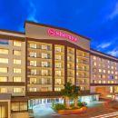 坦帕河濱喜來登酒店(Sheraton Tampa Riverwalk)