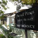 奧克蘭帕內爾松木酒店(Parnell Pines Hotel Auckland)