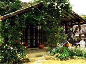 海蒂之家酒店(Heidi's Home)