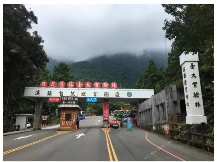 南投台大溪頭教育中心Xitou Forest Recreational Area