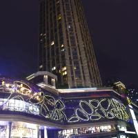 重慶斯維登度假公寓(南濱路東原1891)酒店預訂