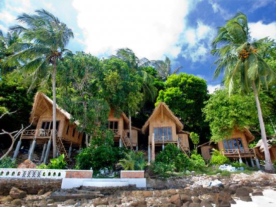 The Cove Phi Island Reviews For 3