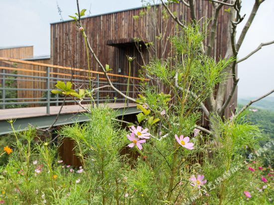 溧陽美岕山野温泉度假村(Meijie Mountain Hotspring Resort)周邊圖片