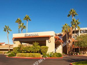 坦佩鳳凰城機場喜來登酒店(Sheraton Phoenix Airport Hotel Tempe)