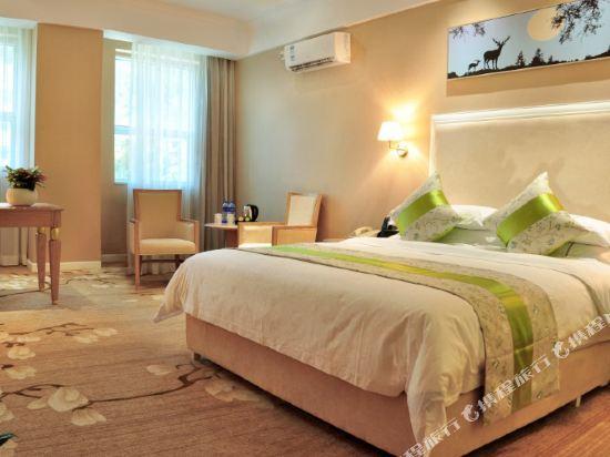 珠海凱迪克酒店(Catic Hotel)豪華商務大床房